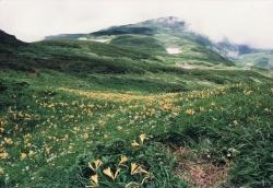 2000年8月鳥海山9 (2)