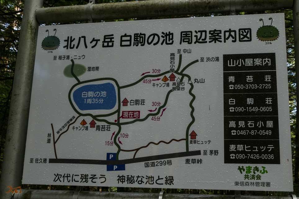 20161029読売旅行1_白駒05