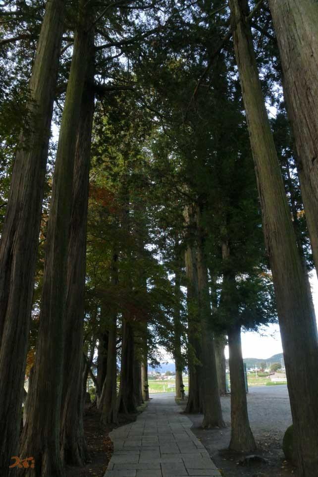 20161029読売旅行5_長円寺15