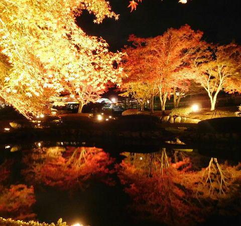 曽木公園 3