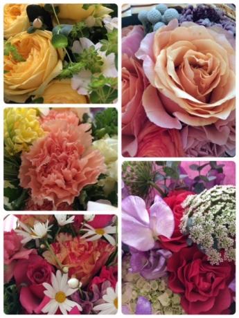 お花たち!