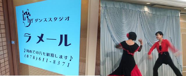 11月度くもの会ツアーは「駒ヶ林遠足ツアー」です。