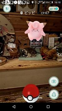 pokemon_pipi34.jpg