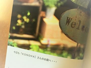 KONOHAの庭 (5)