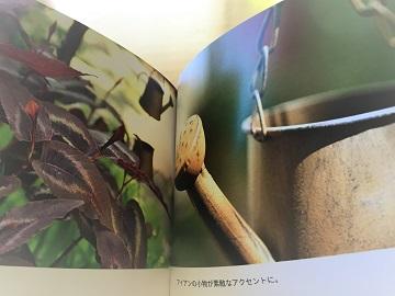 KONOHAの庭 (6)
