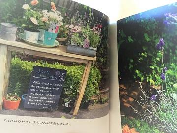 KONOHAの庭 (3)