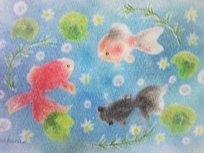 WAKANA金魚