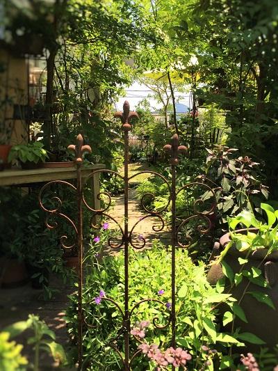 KONOHAの庭 (2)