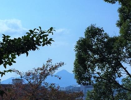 桂公園 (3)