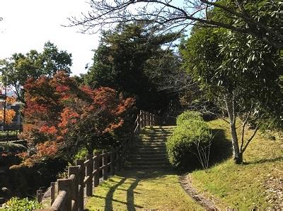 20161116彩が丘 (3)