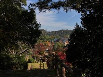 20161116彩が丘 (4)