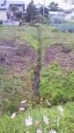 畑の隣の水路