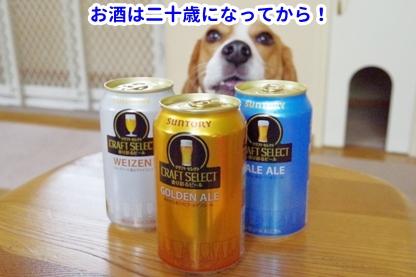 モラ ビール1