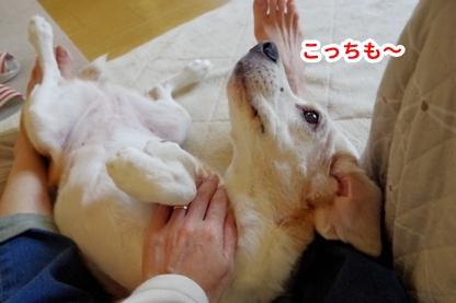 甘える 7