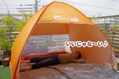 テント 5