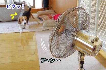 扇風機 1