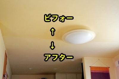 スチーム天井