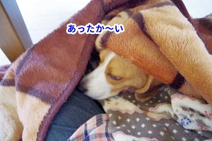 梅雨寒 1