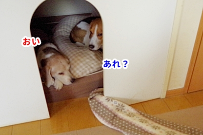 梅雨寒 9