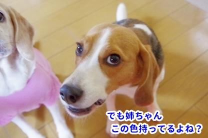 ピンク 2