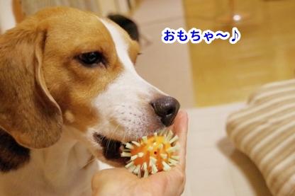 歯磨き 4