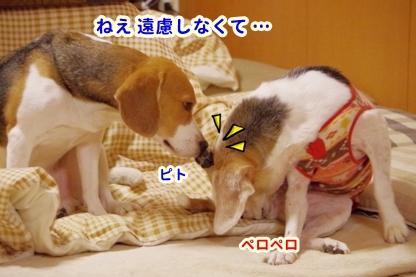ちれちれ 4