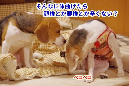 ちれちれ 2