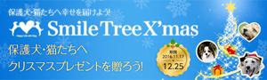 main_banner01_xmas1224.jpg
