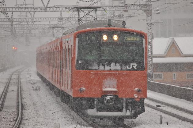 P2115523.jpg