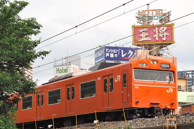 P7135492.jpg