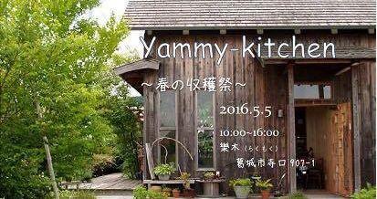 yammy10.jpg