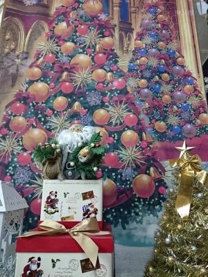 クリスマス撮影案内