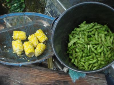 夏野菜をモグモグ