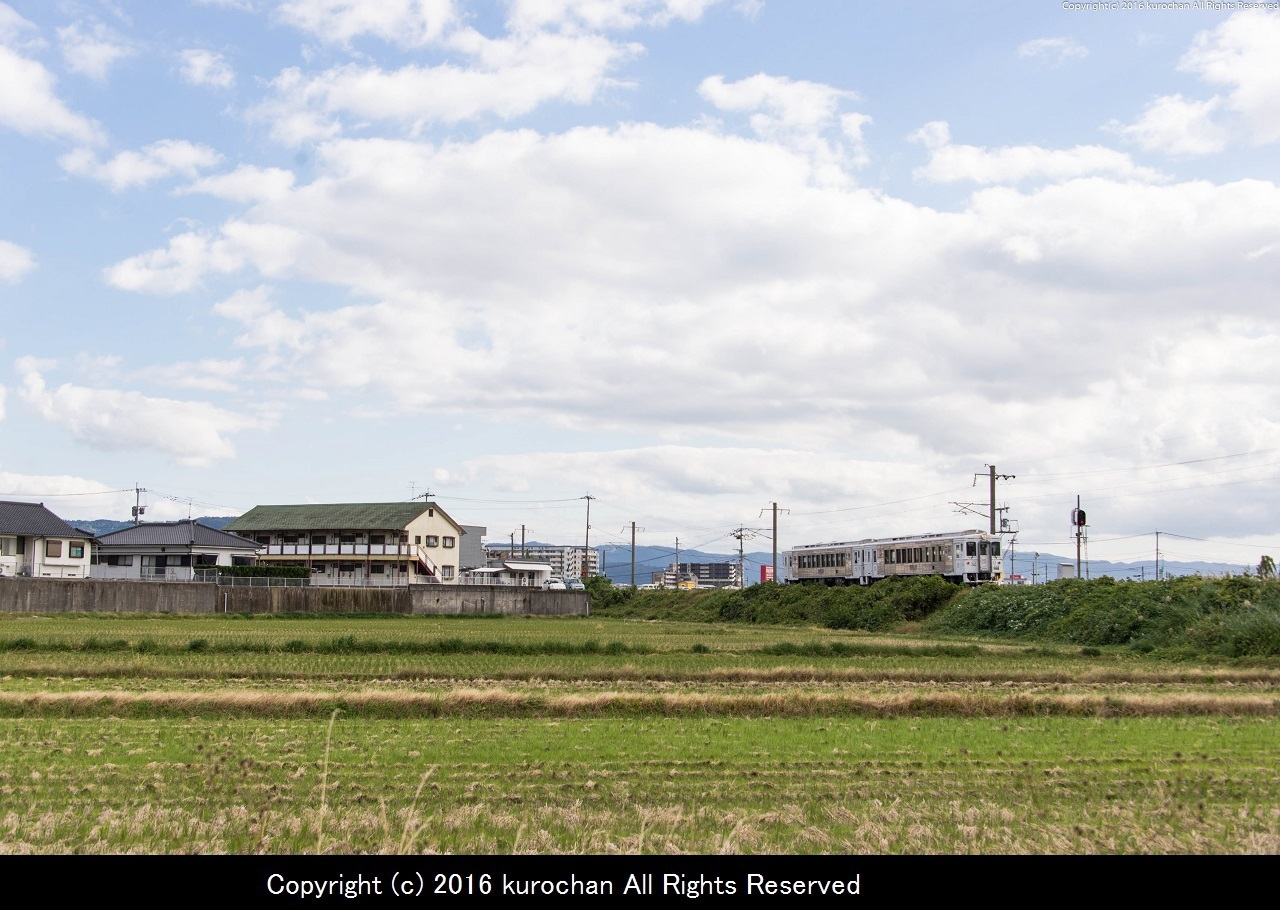 BSF_2333-2.jpg