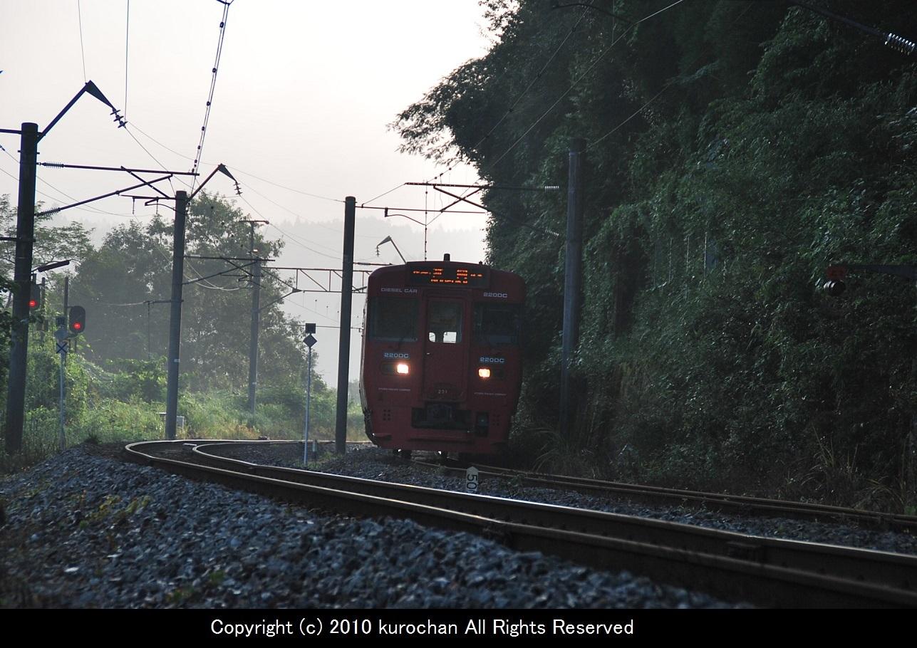 DSC_8299-2.jpg