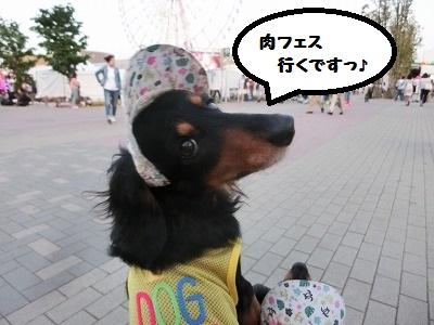 71217.jpg