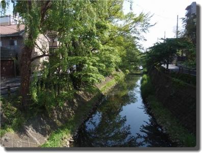 mini_32_sakagawa_P4269724.jpg