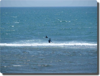 mini_32_surfer_P6272433.jpg