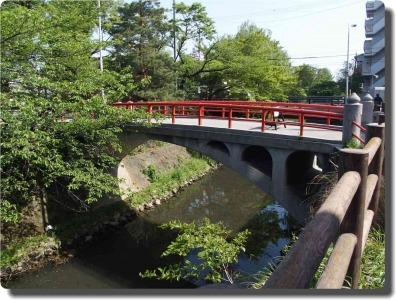 mini_33_sakagawa_P4269736.jpg