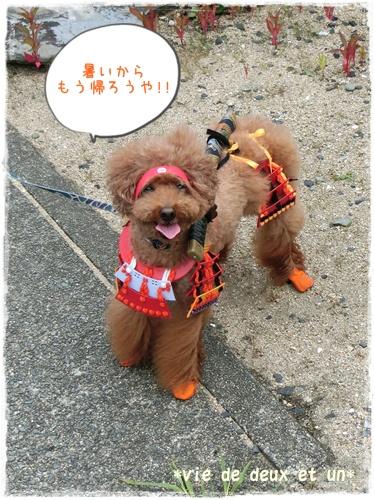 20160729blog55.jpg