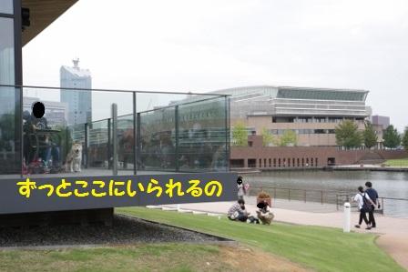 20161003221938b66.jpg