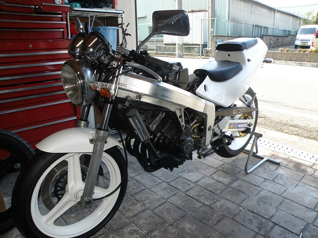 MC190343.jpg