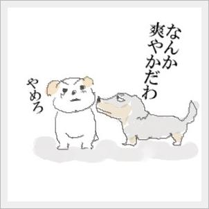 sawayaka1.jpg
