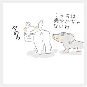 sawayaka2.jpg