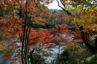 三河湖畔の紅葉