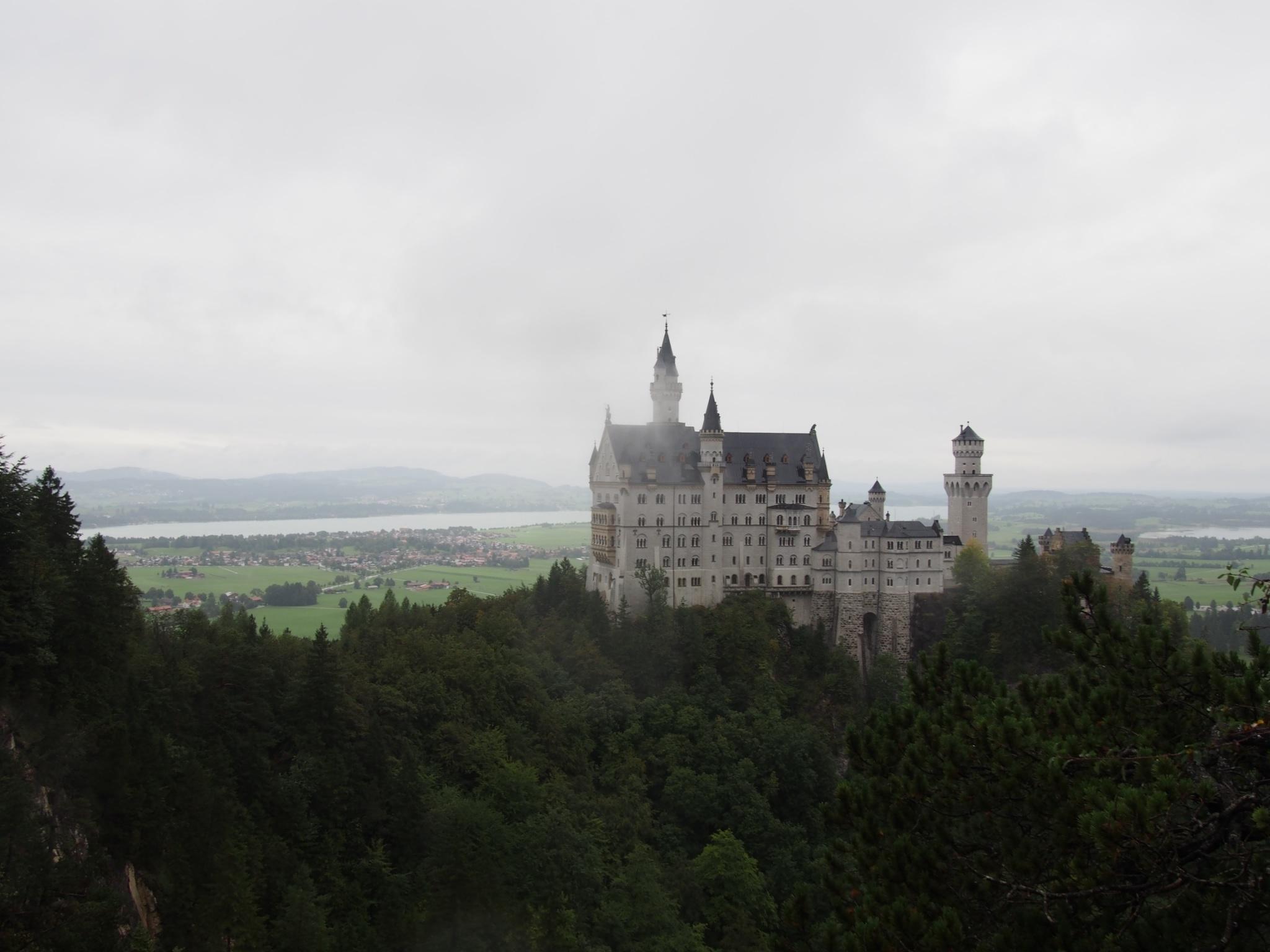 ウィーン・ドイツ_6427