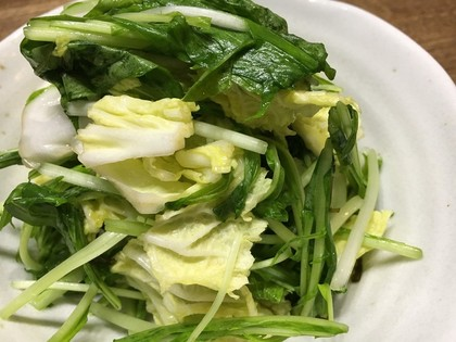 白菜と水菜のサラダ漬け