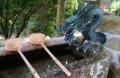 手水槽の龍