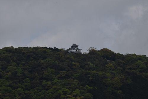 280422 錦帯橋8