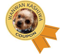 coupon-3.jpg